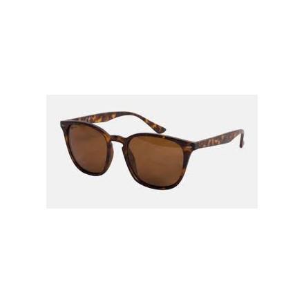 KORDA Okulary shoreditch - matt tortoise shell/brown lens